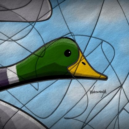 25-The-Wild-Duck