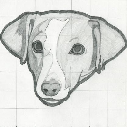 Olly-sketch